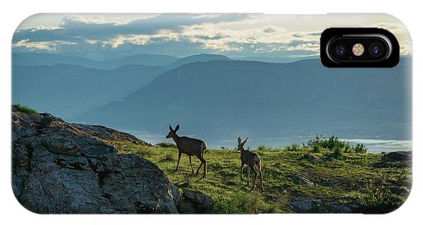 Kuipers Peak Deer IPhone Case
