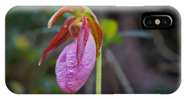 Lady Slipper Orchid IPhone Case