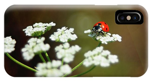 Ladybug In White IPhone Case