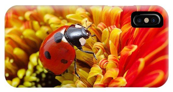 Botany iPhone Case - Ladybug by Irin-k