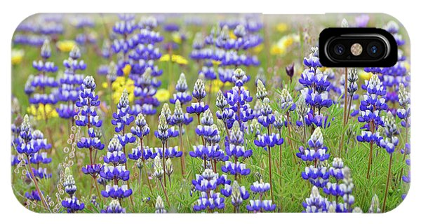 iPhone Case - Land Of Lupine by Kathy Yates