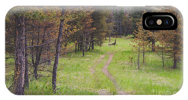 Hiking Path iPhone Case - Landscape Image Of Hiking Trail In The by Brian A Smith