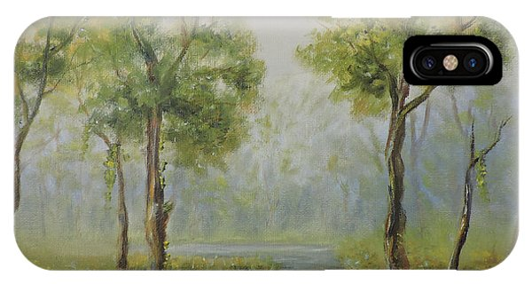 Landscape Of The Great Swamp Of New Jersey With Pond IPhone Case