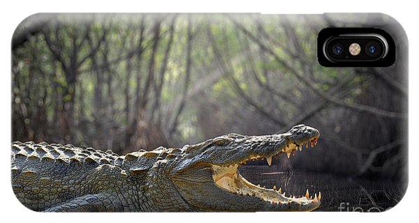 Open iPhone Case - Large Crocodile, National Park, Sri by Volodymyr Burdiak