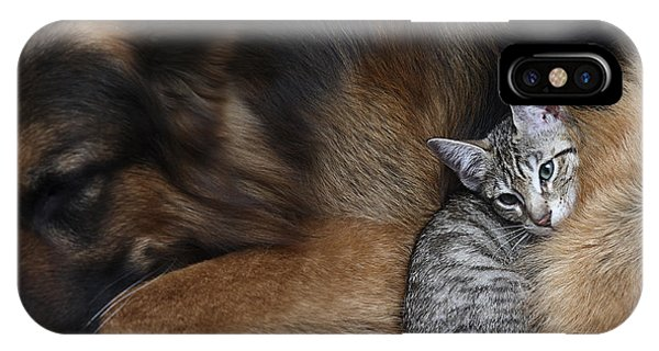 Adult iPhone Case - Large Dog And A Cat by Valentina Razumova