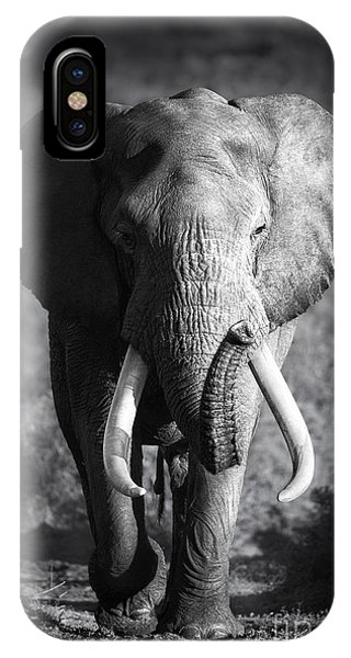 Large Elephant Bull Approaching Phone Case by Johan Swanepoel