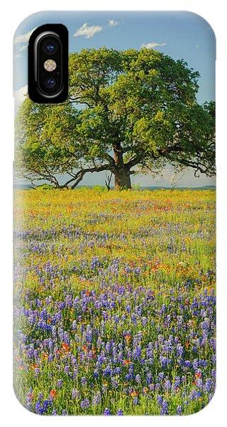 iPhone Case - Large Oak Tree In Expansive Meadow by Adam Jones
