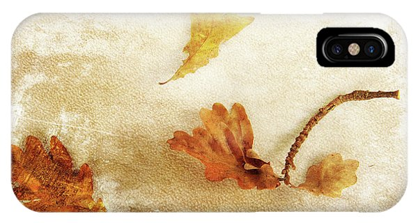 IPhone Case featuring the photograph Last Days Of Fall by Randi Grace Nilsberg
