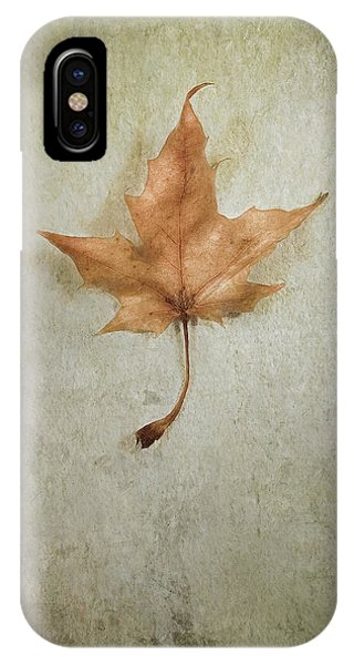 Amber iPhone Case - Last Days by Scott Norris