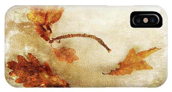 IPhone Case featuring the photograph Late Late Fall by Randi Grace Nilsberg