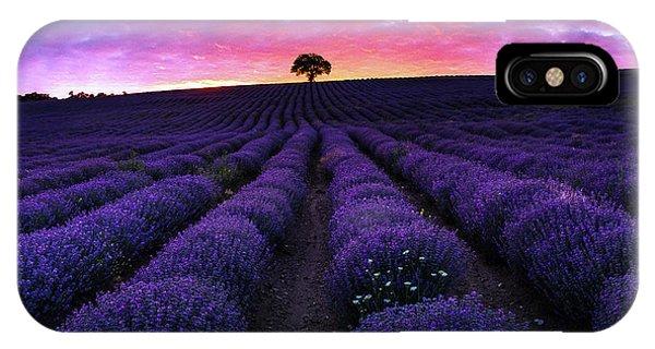 Lavender Dreams IPhone Case