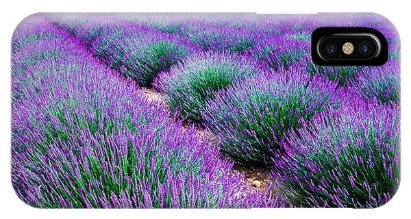 Bouquet iPhone Case - Lavender Field by Edler Von Rabenstein