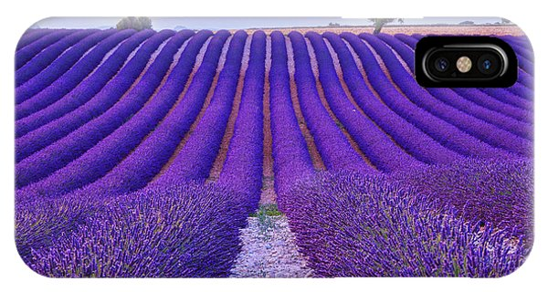 Scent iPhone Case - Lavender Field Summer Sunset Landscape by Fesus Robert
