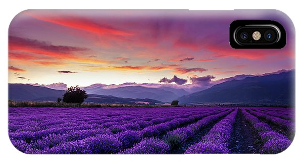 Dusk iPhone Case - Lavender Season by Evgeni Dinev