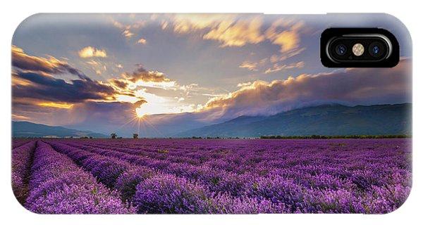 Lavender Sun IPhone Case