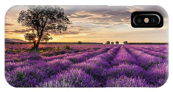 Lavender Sunrise IPhone Case