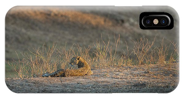 IPhone Case featuring the photograph Lc10 by Joshua Able's Wildlife