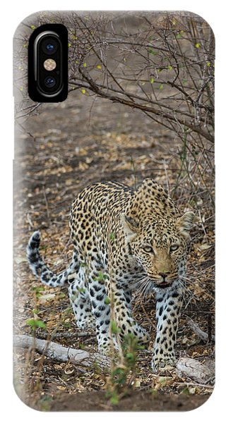 IPhone Case featuring the photograph LC2 by Joshua Able's Wildlife