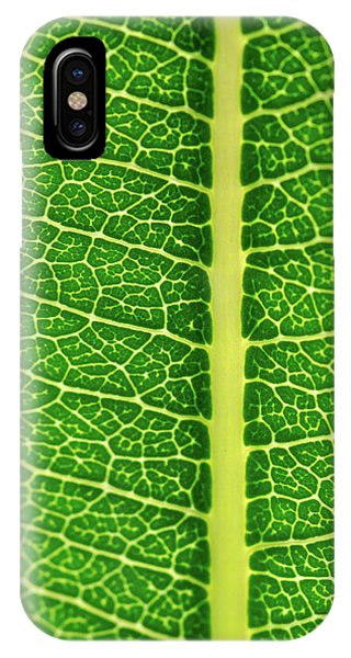 IPhone Case featuring the photograph Leaf Veins by Jeff Phillippi