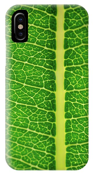 Leafy Detail IPhone Case