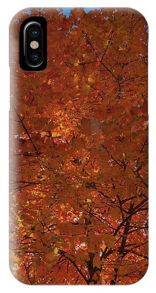 Leaves Of Fire IPhone Case