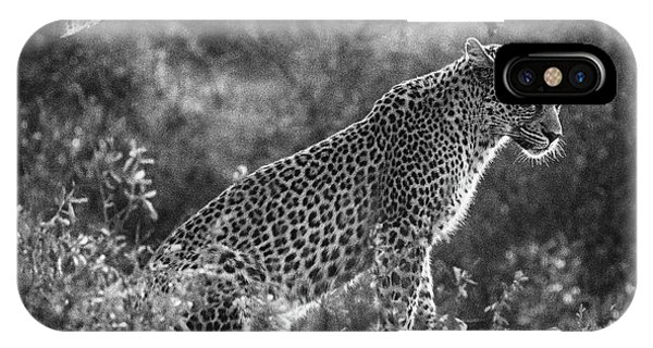 Leopard Sitting Black And White IPhone Case