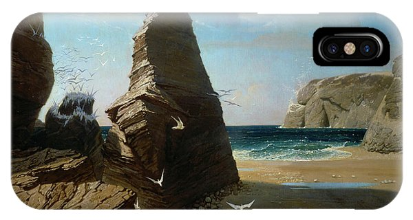 Barren iPhone Case - Les Petites Mouettes, Small Seagulls by Octave Penguilly L'Haridon
