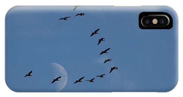 Canada Goose iPhone Case - Lesser Canada Geese, Migration Flight by Ken Archer