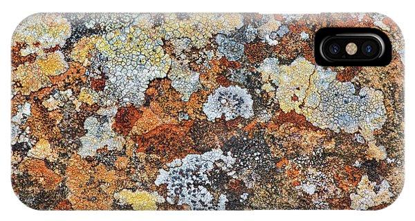 Alga iPhone X Case - Lichen On Rock by Tim Gainey
