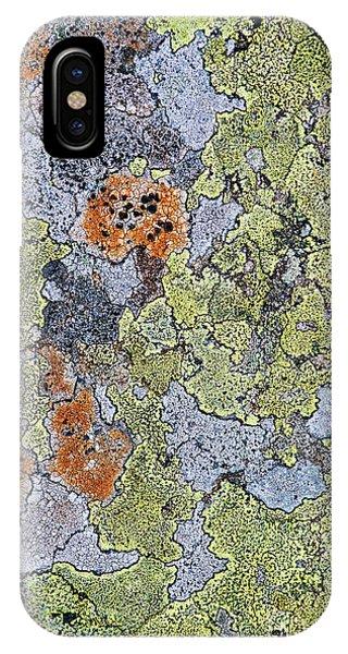 Alga iPhone X Case - Lichen On Stone by Tim Gainey