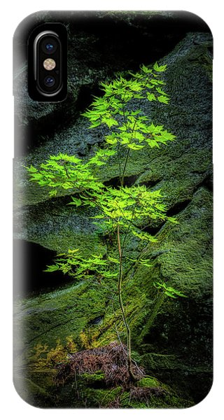 Growth iPhone Case - Life Will Find A Way by Tom Mc Nemar