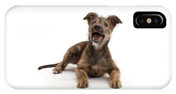 IPhone Case featuring the photograph Life's A Bark by Warren Photographic
