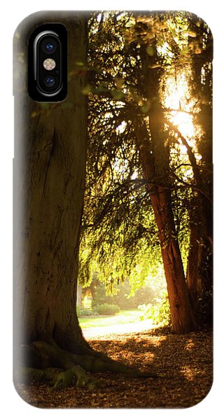 IPhone Case featuring the photograph Light Between Trees by Scott Lyons