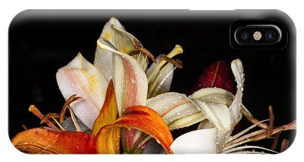Botanical Garden iPhone Case - Lilies In A Garden Macro by Victorkomissar