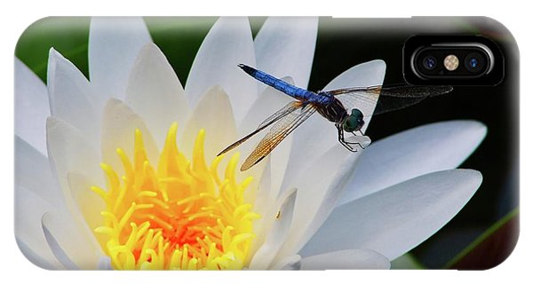 Lily And Dragonfly IPhone Case