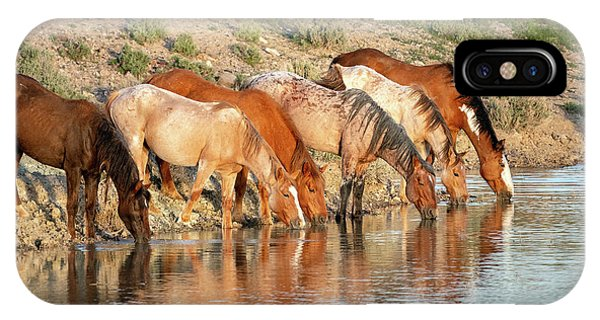 Lineup At The Pond-- Wild Horses IPhone Case