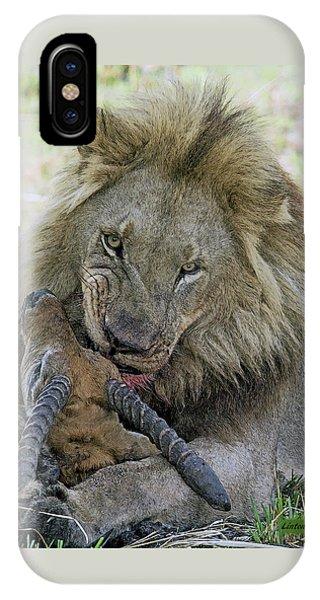 Lion Prey IPhone Case