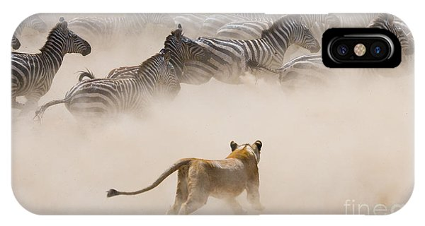 Zoology iPhone Case - Lioness Attack On A Zebra. National by Gudkov Andrey