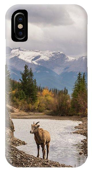 Little Bighorn IPhone Case