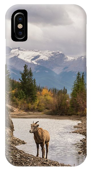 Little Bighorn IPhone Case