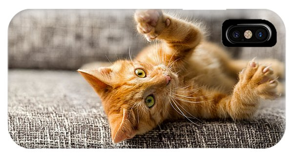 Adorable iPhone Case - Little Cat Playing On The Bed by Lucky Business