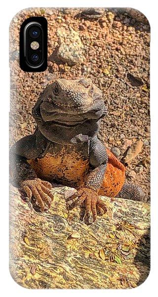 Lizard Portrait  IPhone Case