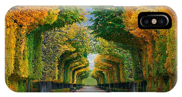 Lush iPhone Case - Long Road In Autumn Park by Badahos