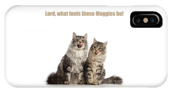 IPhone Case featuring the photograph Lord, What Fools These Moggies Be by Warren Photographic