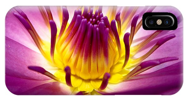 Harmony iPhone Case - Lotus, Fresh Color, With Yellow Stamens by Baitong