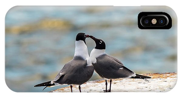 Love Birds IPhone Case