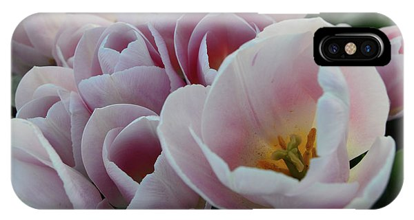 Love Me Softly IPhone Case