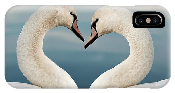 Swan iPhone Case - Love Swans by Delphimages Photo Creations