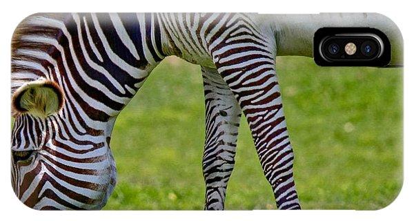 Love Zebras IPhone Case