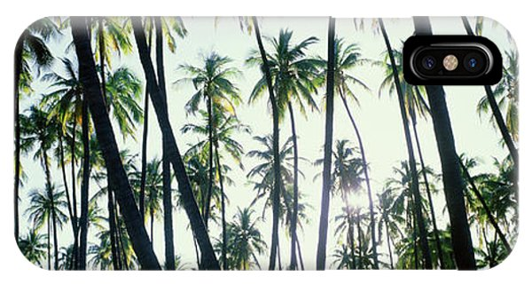 iPhone Case - Low Angle View Of Coconut Palm Trees by Panoramic Images